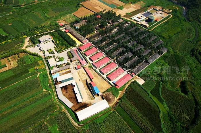航拍白沙村养殖场